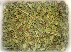 Vervain Herb